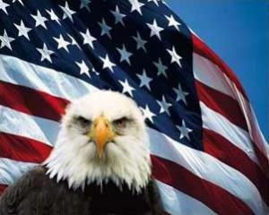 Adelaar Amerika